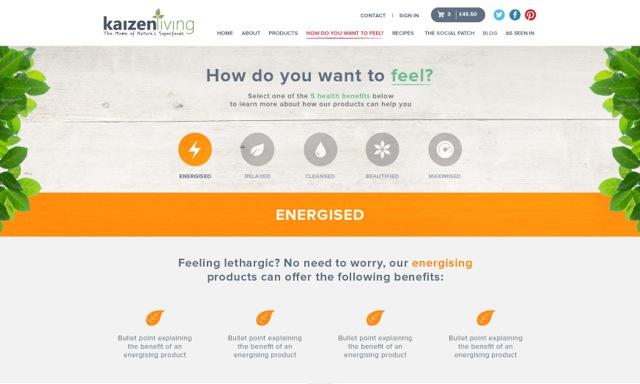 kaizen-preview-website-2